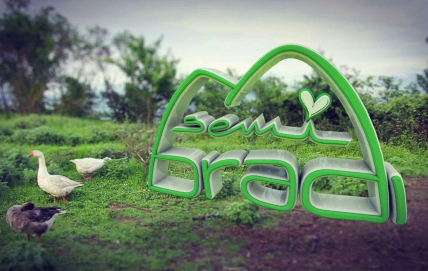 Semi Bradi & Logo
